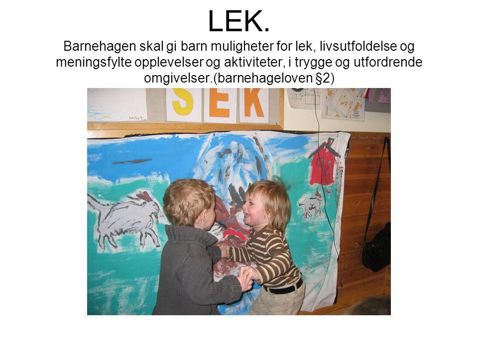 LEK. Barnehagen skal gi barn muligheter for lek, livsutfoldelse og meningsfylte opplevelser og aktiviteter, i trygge og utfordrende omgivelser.(barneh