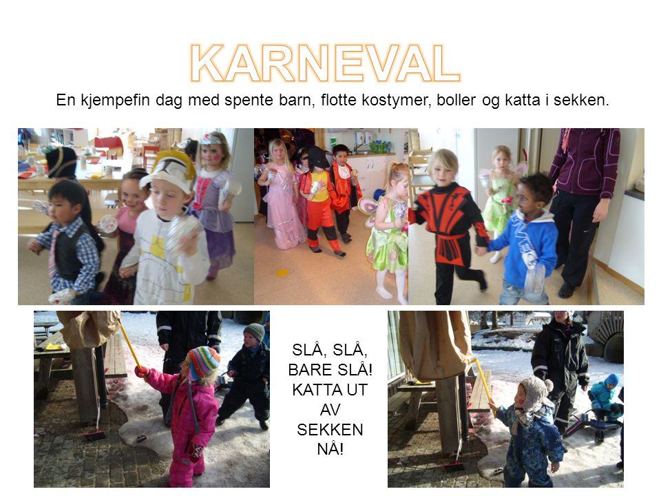 SLÅ, SLÅ, BARE SLÅ! KATTA UT AV SEKKEN NÅ! En kjempefin dag med spente barn, flotte kostymer, boller og katta i sekken.