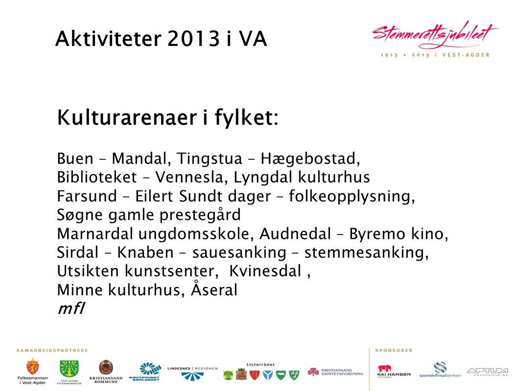 Aktiviteter 2013 i VA Kulturarenaer i fylket: Buen – Mandal, Tingstua – Hægebostad, Biblioteket – Vennesla, Lyngdal kulturhus Farsund – Eilert Sundt d