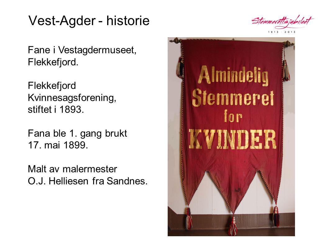 Vest-Agder - historie Fane i Vestagdermuseet, Flekkefjord. Flekkefjord Kvinnesagsforening, stiftet i 1893. Fana ble 1. gang brukt 17. mai 1899. Malt a