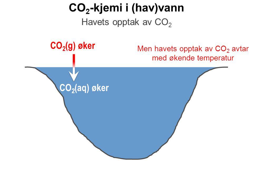 CO 2 -kjemi i (hav)vann CO 2 (g) øker Havets opptak av CO 2 CO 2 (aq) øker Men havets opptak av CO 2 avtar med økende temperatur