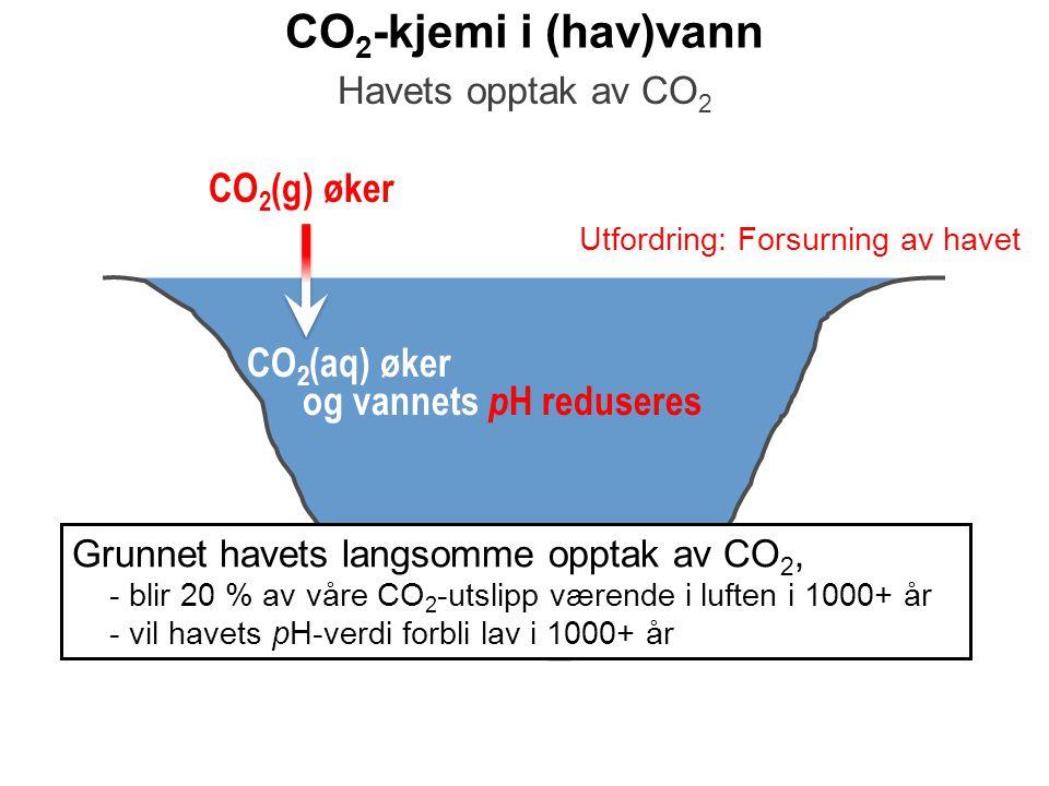 CO 2 -kjemi i (hav)vann CO 2 (g) øker Havets opptak av CO 2 CO 2 (aq) øker og vannets p H reduseres Utfordring: Forsurning av havet Grunnet havets lan