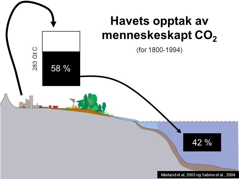 Helge Drange Geofysisk institutt Universitetet i Bergen 283 Gt C 58 % 42 % Havets opptak av menneskeskapt CO 2 (for 1800-1994) Marland et al, 2003 og