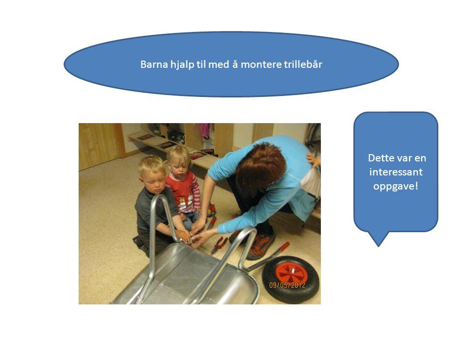 Barna hjalp til med å montere trillebår Dette var en interessant oppgave!