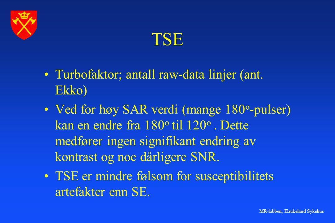 MR-labben, Haukeland Sykehus Dual kontrast TSE.