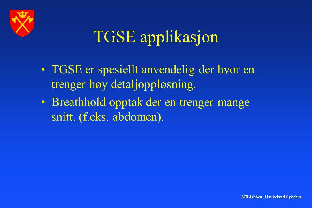 MR-labben, Haukeland Sykehus TGSE applikasjon •TGSE er spesiellt anvendelig der hvor en trenger høy detaljoppløsning. •Breathhold opptak der en trenge