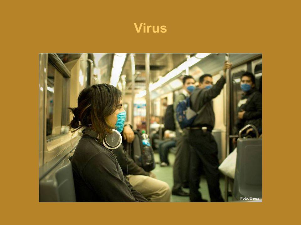 Virus •Virus er små mikroorganismer som forårsaker infeksjon.