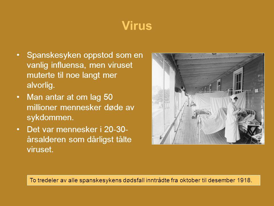 Virus •Spanskesyken oppstod som en vanlig influensa, men viruset muterte til noe langt mer alvorlig.