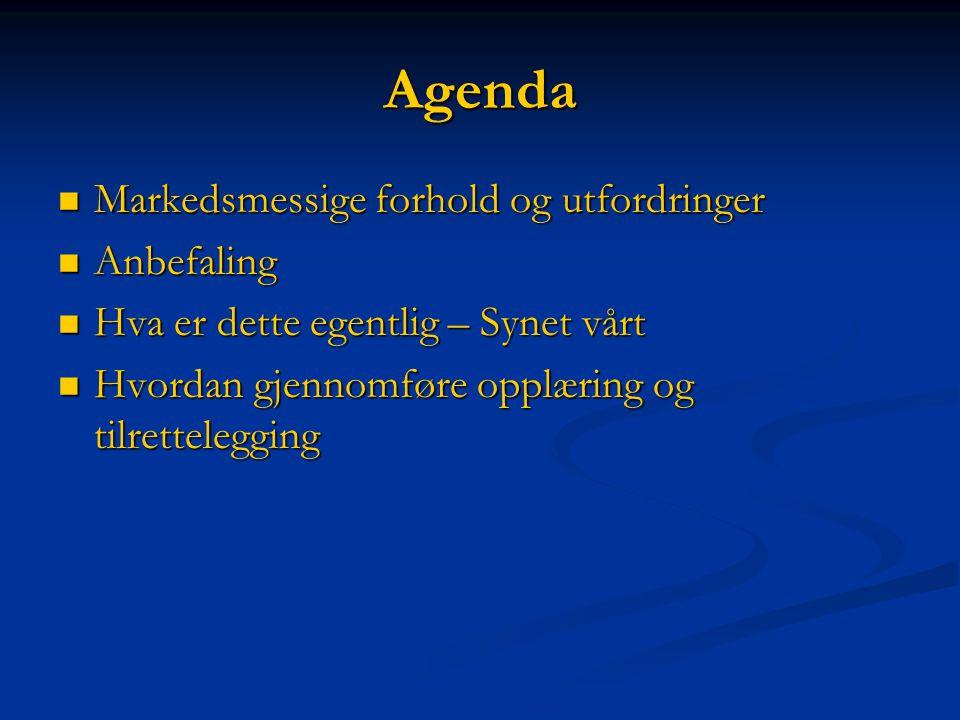 Agenda  Markedsmessige forhold og utfordringer  Anbefaling  Hva er dette egentlig – Synet vårt  Hvordan gjennomføre opplæring og tilrettelegging