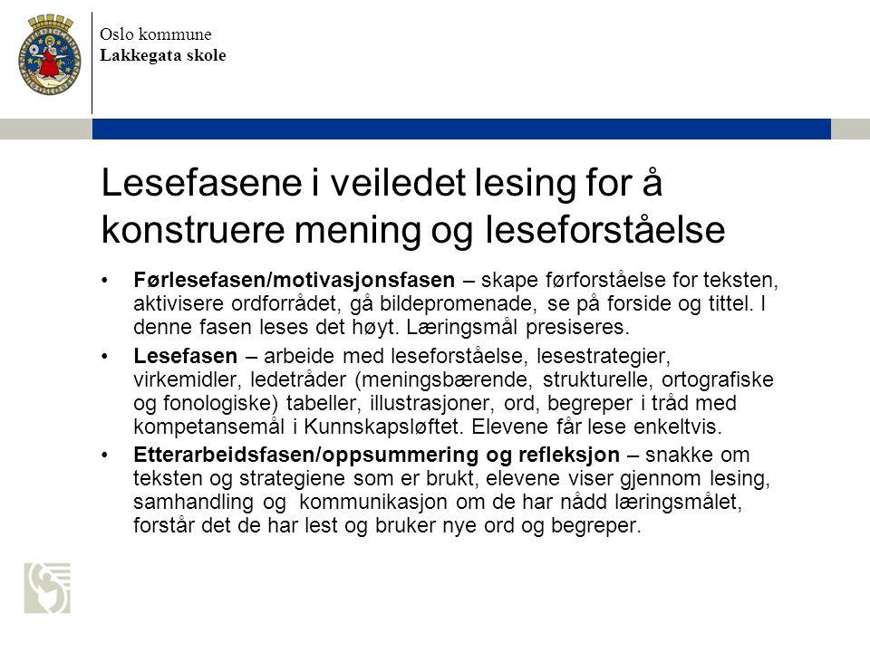Oslo kommune Lakkegata skole Forslag til faglitteratur •Bråten, Ivar 2002: Vygotsky i pedagogikken.