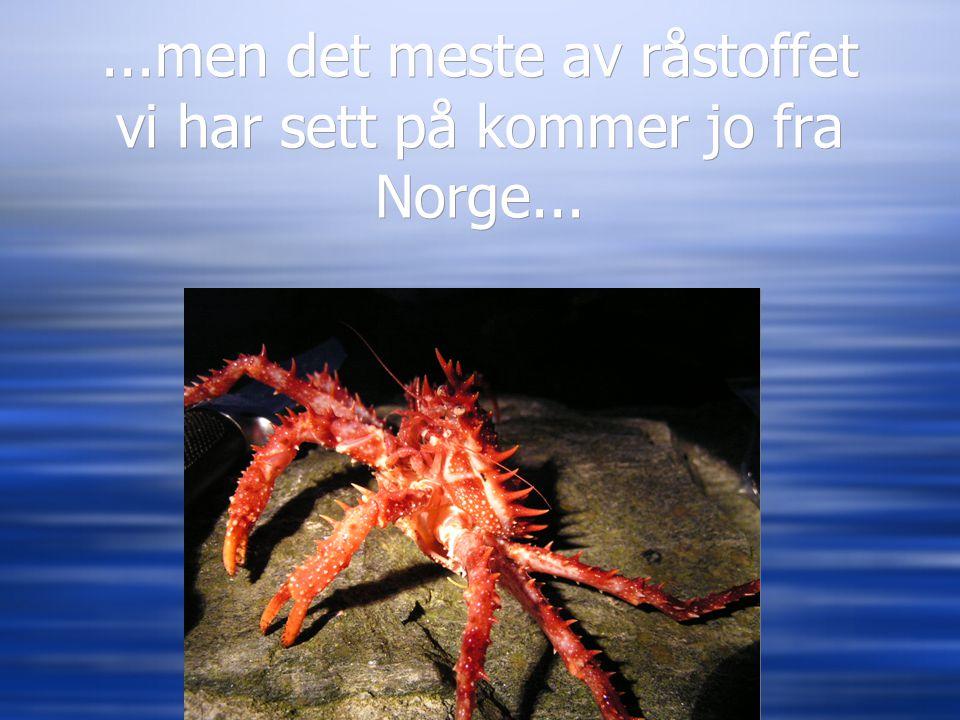 ...men det meste av råstoffet vi har sett på kommer jo fra Norge...