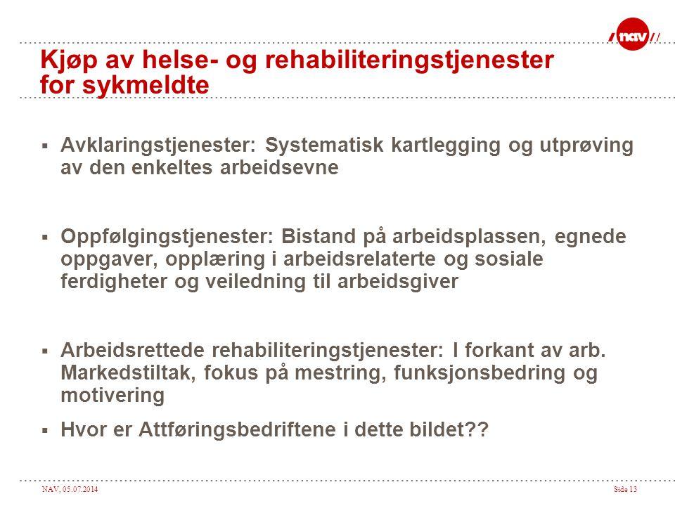 NAV, 05.07.2014Side 13 Kjøp av helse- og rehabiliteringstjenester for sykmeldte  Avklaringstjenester: Systematisk kartlegging og utprøving av den enk