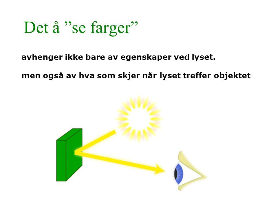 """Det å """"se farger"""" avhenger ikke bare av egenskaper ved lyset. men også av hva som skjer når lyset treffer objektet"""