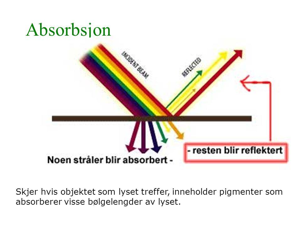 Absorbsjon Skjer hvis objektet som lyset treffer, inneholder pigmenter som absorberer visse bølgelengder av lyset.