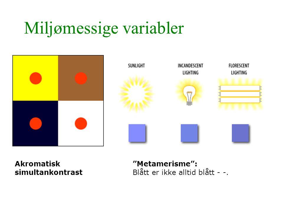 """Miljømessige variabler Akromatisk simultankontrast """"Metamerisme"""": Blått er ikke alltid blått - -."""