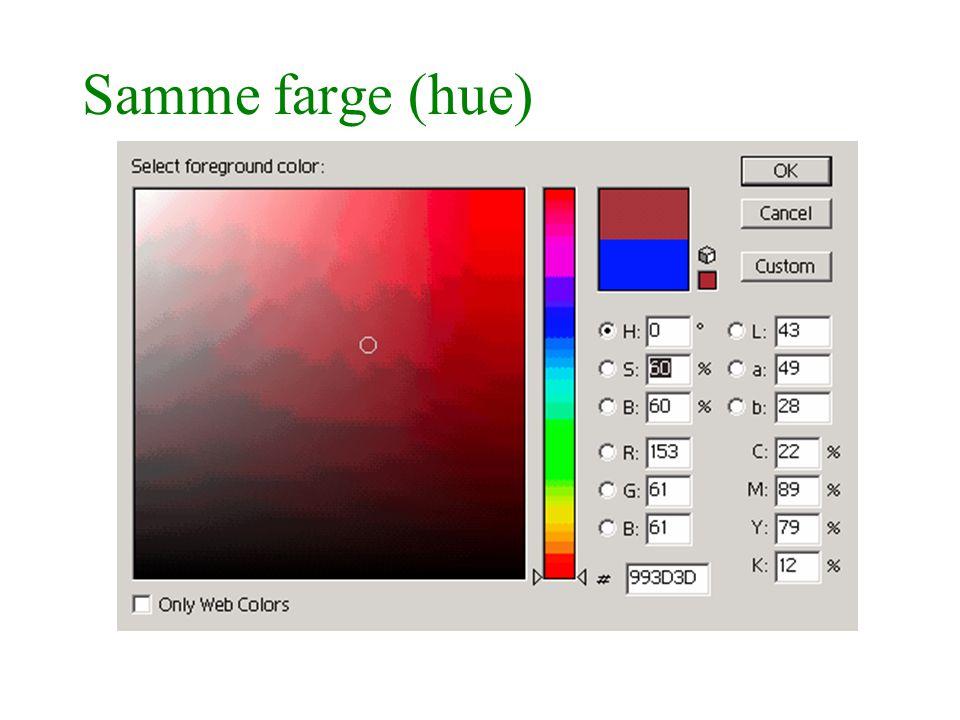 Samme farge (hue)