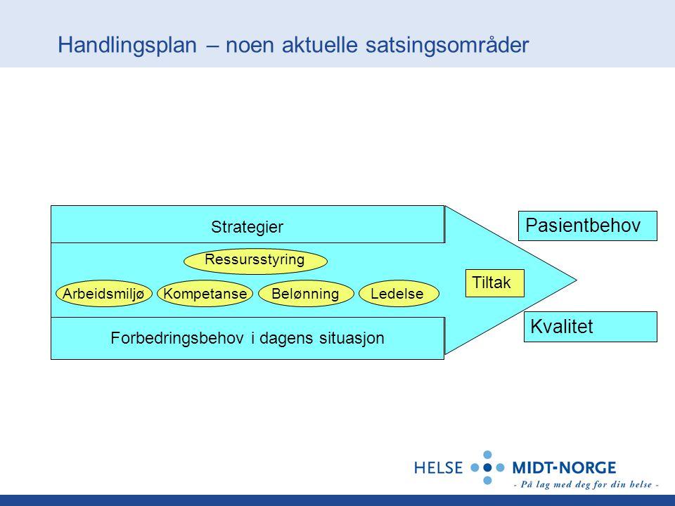 Handlingsplan – noen aktuelle satsingsområder Strategier Ledelse Belønning Ressursstyring KompetanseArbeidsmiljø Tiltak Pasientbehov Kvalitet Forbedri