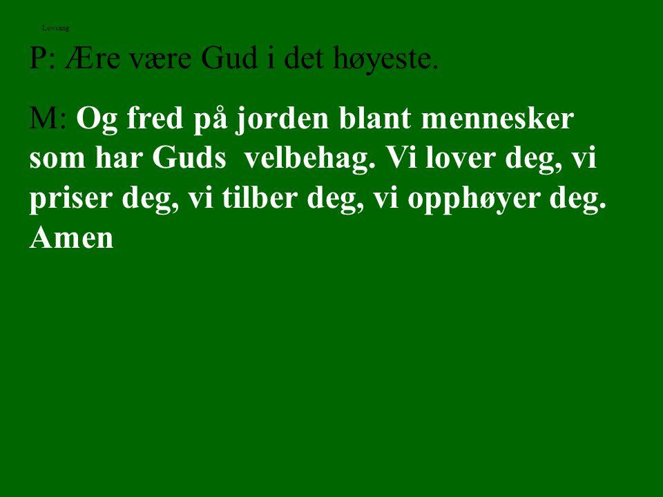 P: Ære være Gud i det høyeste. M: Og fred på jorden blant mennesker som har Guds velbehag. Vi lover deg, vi priser deg, vi tilber deg, vi opphøyer deg