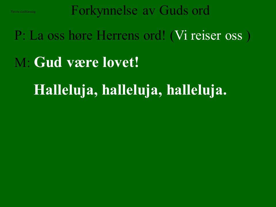 Forkynnelse av Guds ord P: La oss høre Herrens ord! (Vi reiser oss ) M: Gud være lovet! Halleluja, halleluja, halleluja. Første skriftlesning