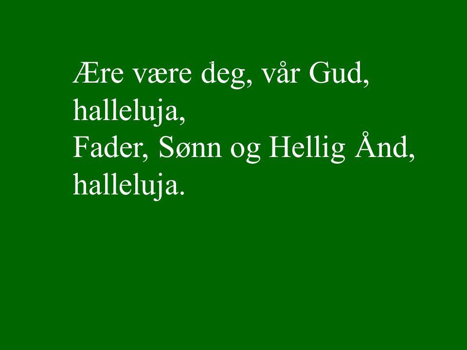 Ære være deg, vår Gud, halleluja, Fader, Sønn og Hellig Ånd, halleluja. Lyset skinner over jord Ref