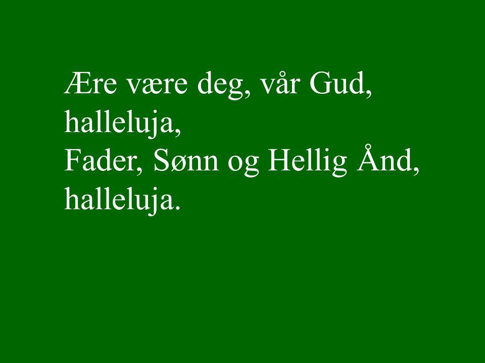 Lyset skinner over jord Ref Ære være deg, vår Gud, halleluja, Fader, Sønn og Hellig Ånd, halleluja.