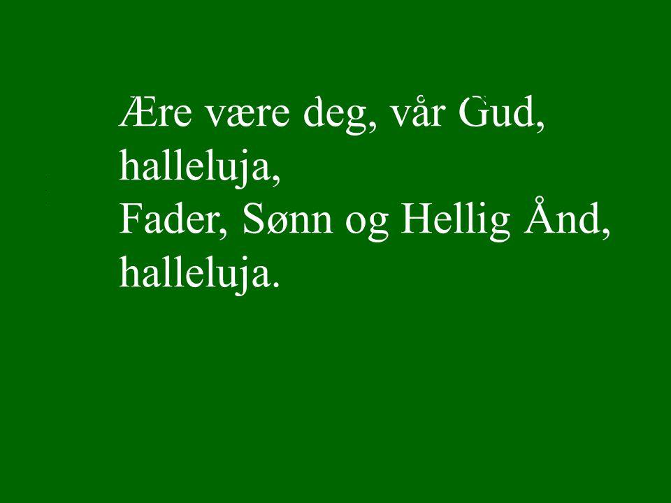 Ære være deg, vår Gud, halleluja, Fader, Sønn og Hellig Ånd, halleluja.... Lyset skinner over jord Ref