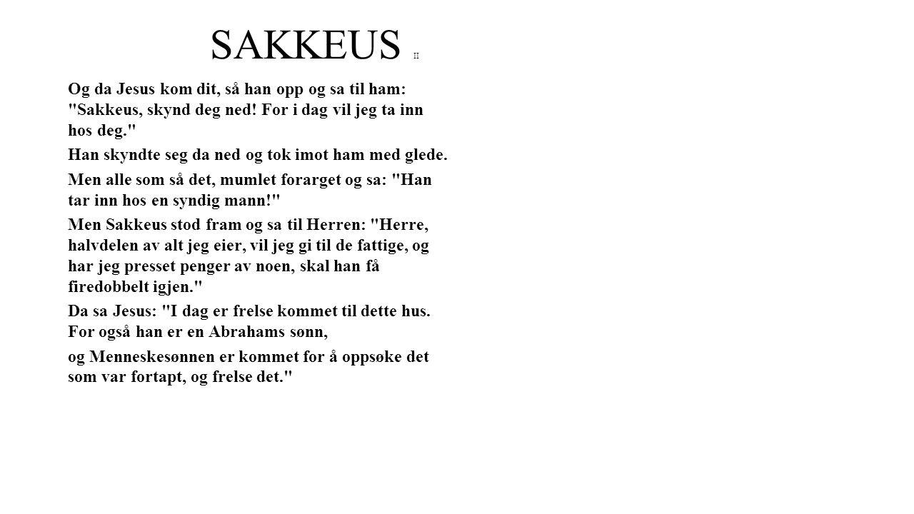 SAKKEUS II Og da Jesus kom dit, så han opp og sa til ham: