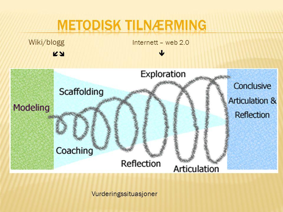 Wiki/blogg  Internett – web 2.0  Vurderingssituasjoner