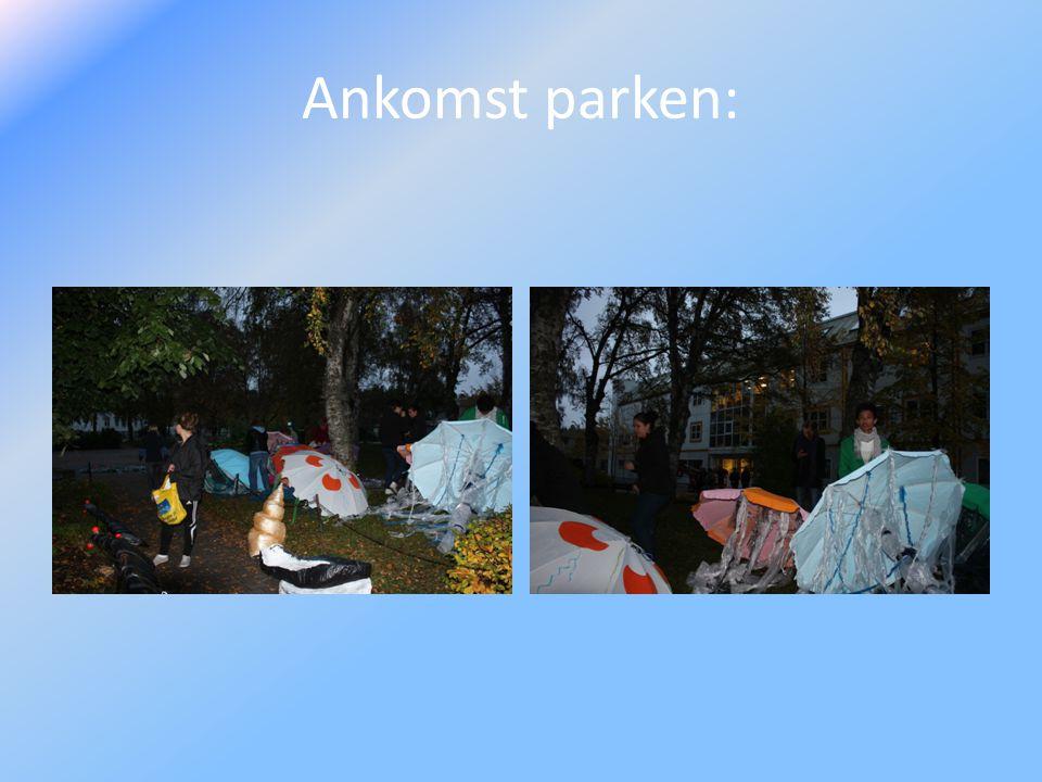 Ankomst parken: