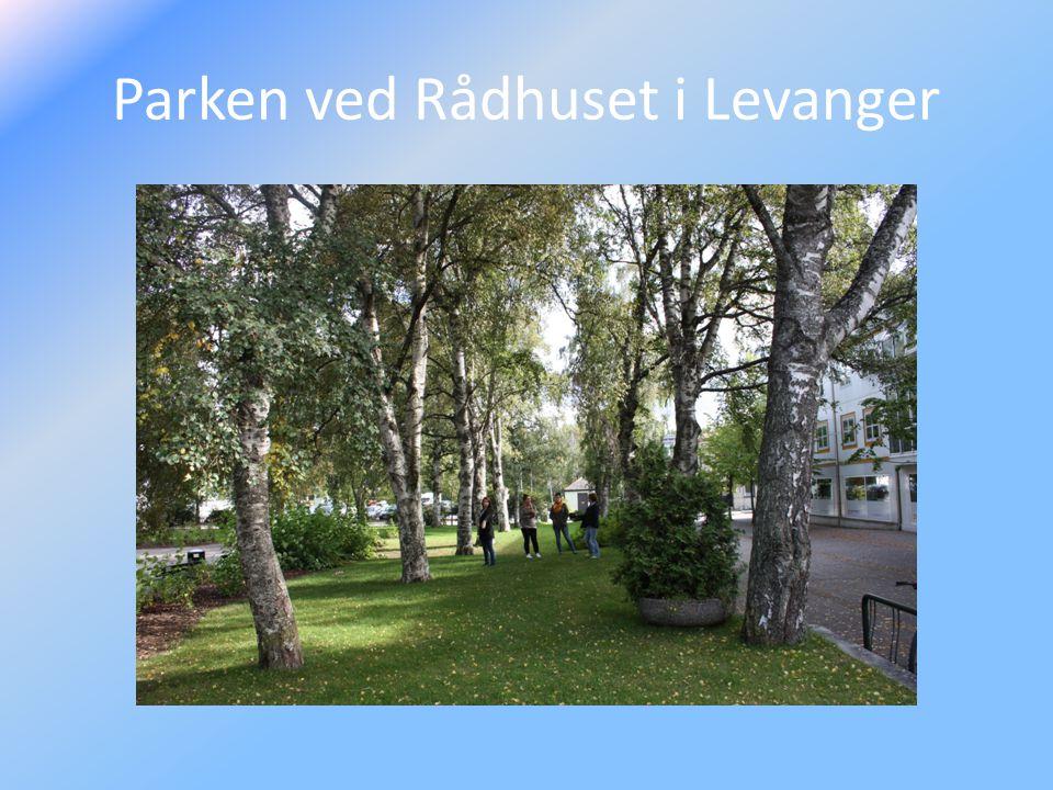 Parken ved Rådhuset i Levanger