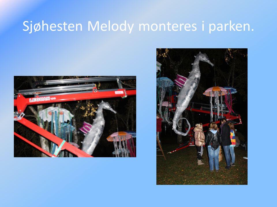 Sjøhesten Melody monteres i parken.
