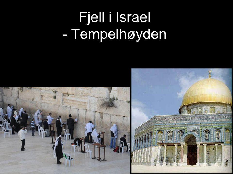 Fjell i Israel - Tempelhøyden