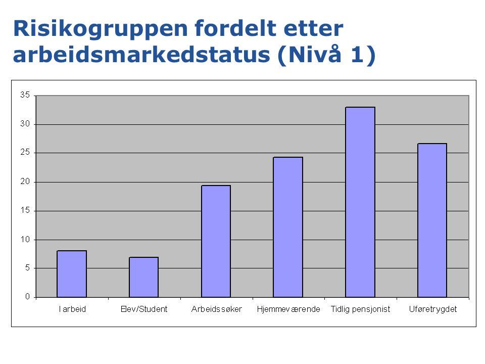 Risikogruppen fordelt etter arbeidsmarkedstatus (Nivå 1)