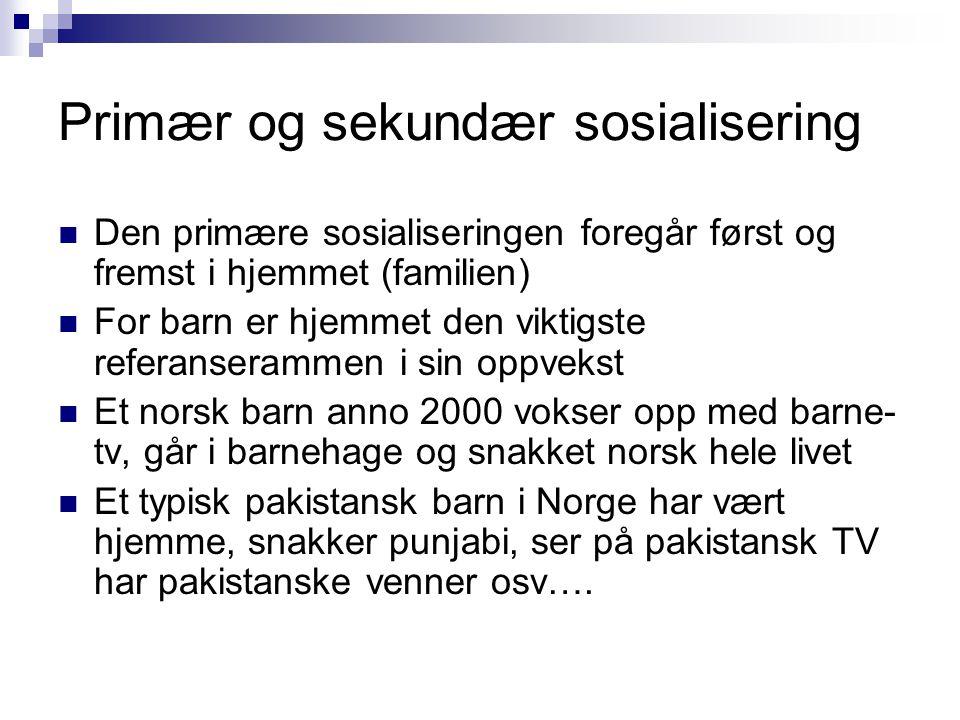 Primær og sekundær sosialisering  Den primære sosialiseringen foregår først og fremst i hjemmet (familien)  For barn er hjemmet den viktigste refera