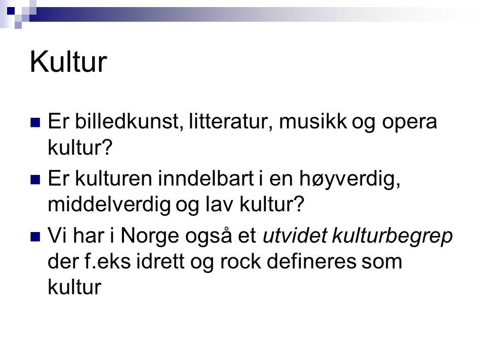 Kultur  Er billedkunst, litteratur, musikk og opera kultur.