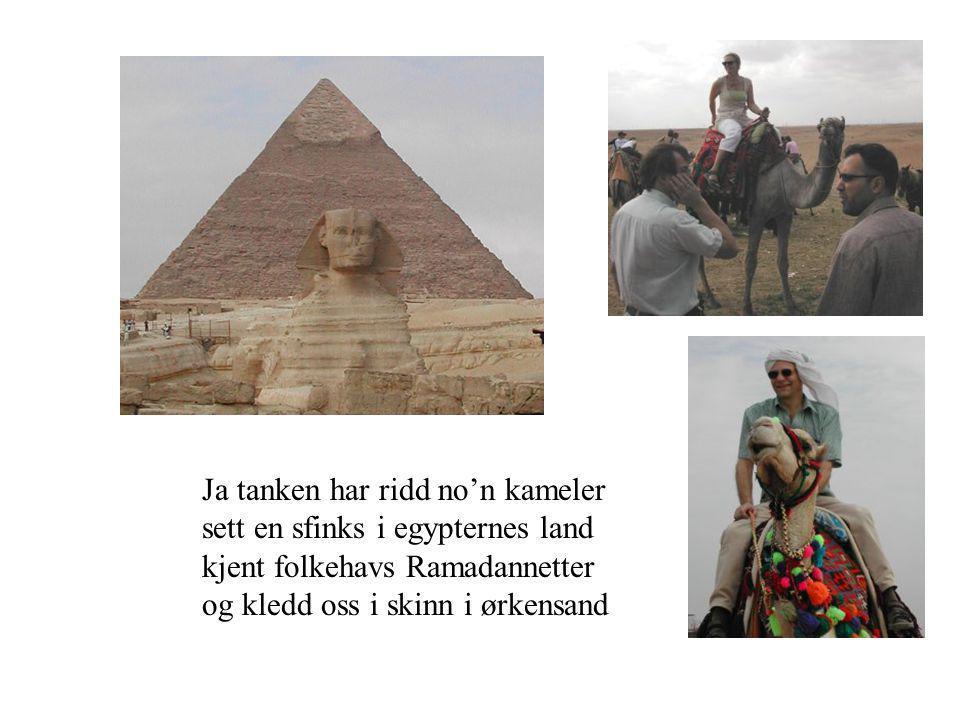 Ja tanken har ridd no'n kameler sett en sfinks i egypternes land kjent folkehavs Ramadannetter og kledd oss i skinn i ørkensand