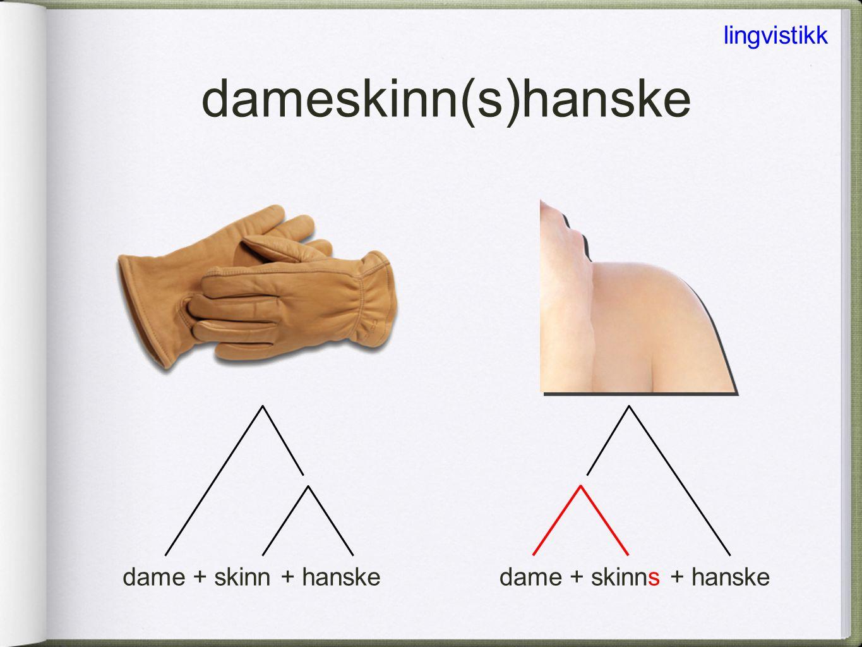 eksamensfest diskusjonstema skinnhanske skinnshanske dameskinnshanske ≠ dameskinnhanske lingvistikk