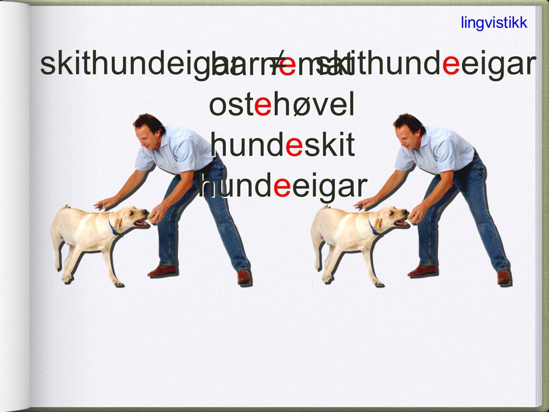 dameskinn(s)hanske dame + skinn + hanskedame + skinns + hanske lingvistikk