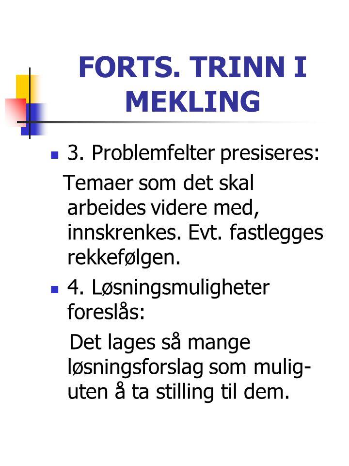FORTS. TRINN I MEKLING  3. Problemfelter presiseres: Temaer som det skal arbeides videre med, innskrenkes. Evt. fastlegges rekkefølgen.  4. Løsnings
