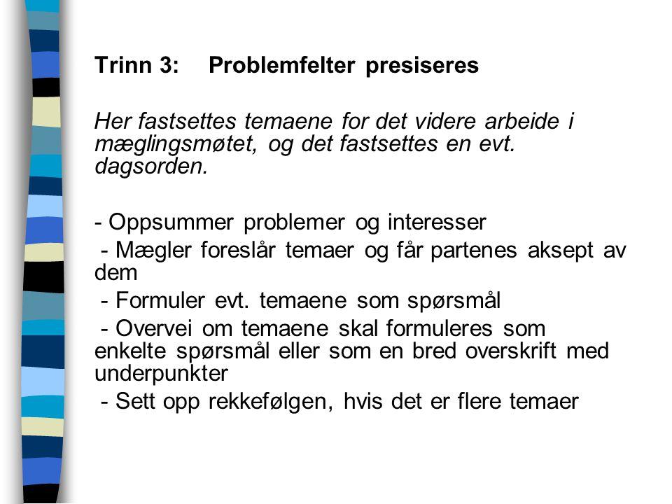  Trinn 3:Problemfelter presiseres Her fastsettes temaene for det videre arbeide i mæglingsmøtet, og det fastsettes en evt. dagsorden.  - Oppsummer p