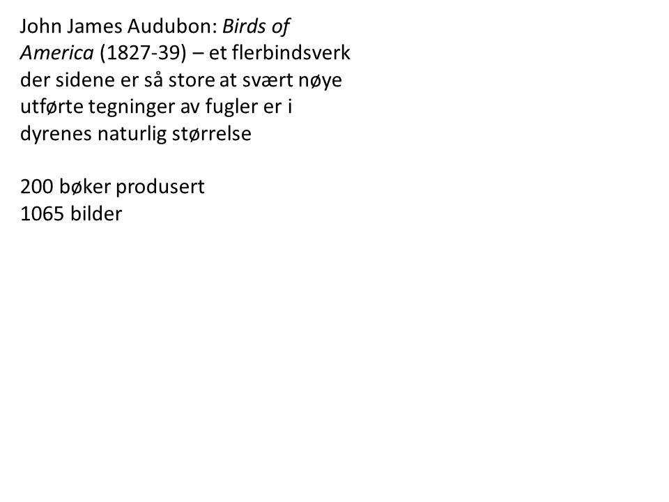 John James Audubon: Birds of America (1827-39) – et flerbindsverk der sidene er så store at svært nøye utførte tegninger av fugler er i dyrenes naturlig størrelse 200 bøker produsert 1065 bilder
