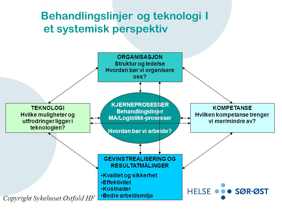 ORGANISASJON Struktur og ledelse Hvordan bør vi organisere oss? GEVINSTREALISERING OG RESULTATMÅLINGER •Kvalitet og sikkerhet •Effektivitet •Kostnader