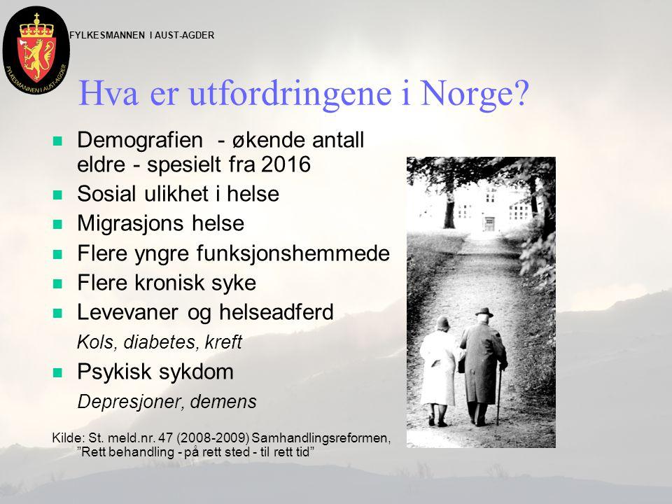 FYLKESMANNEN I AUST-AGDER Hva er utfordringene i Norge? n Demografien - økende antall eldre - spesielt fra 2016 n Sosial ulikhet i helse n Migrasjons