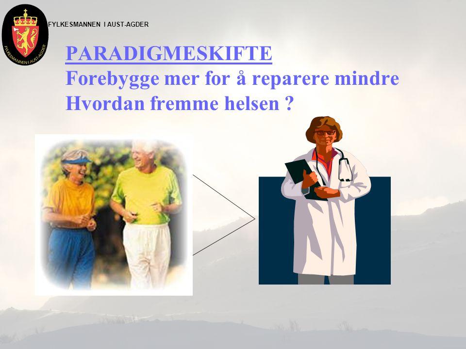 FYLKESMANNEN I AUST-AGDER PARADIGMESKIFTE Forebygge mer for å reparere mindre Hvordan fremme helsen ?