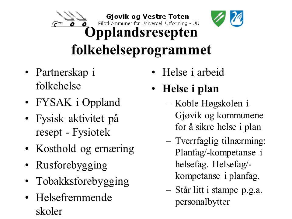 Opplandsresepten folkehelseprogrammet •Partnerskap i folkehelse •FYSAK i Oppland •Fysisk aktivitet på resept - Fysiotek •Kosthold og ernæring •Rusforebygging •Tobakksforebygging •Helsefremmende skoler •Helse i arbeid •Helse i plan –Koble Høgskolen i Gjøvik og kommunene for å sikre helse i plan –Tverrfaglig tilnærming: Planfag/-kompetanse i helsefag.