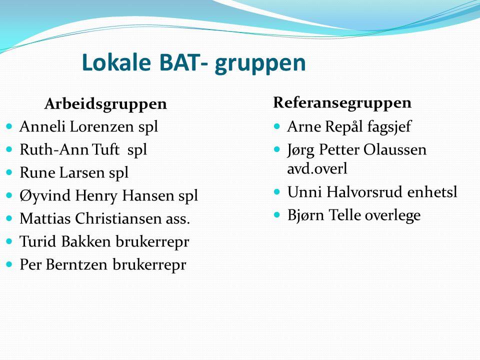 Lokale BAT- gruppen Arbeidsgruppen  Anneli Lorenzen spl  Ruth-Ann Tuft spl  Rune Larsen spl  Øyvind Henry Hansen spl  Mattias Christiansen ass.