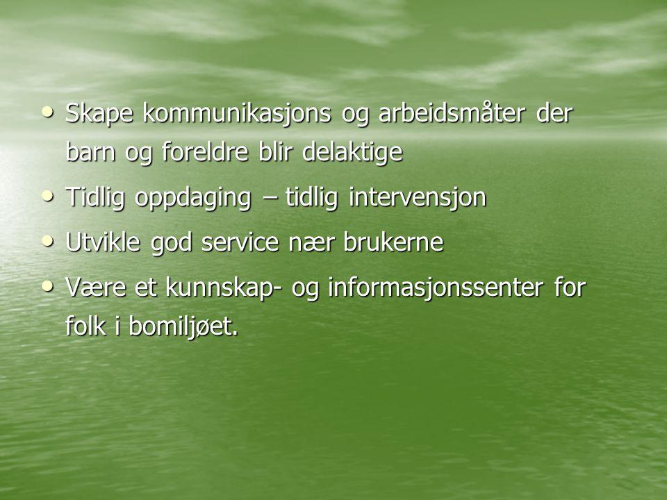 Aktuelle tjenester tiltak •Svangerskapsomsorg •Helsestasjon •Åpen barnehage •Forebyggende barne- og familievern •PPT •Gruppeaktiviteter •Andre