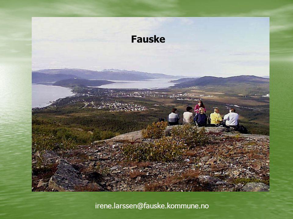 Fauske irene.larssen@fauske.kommune.no