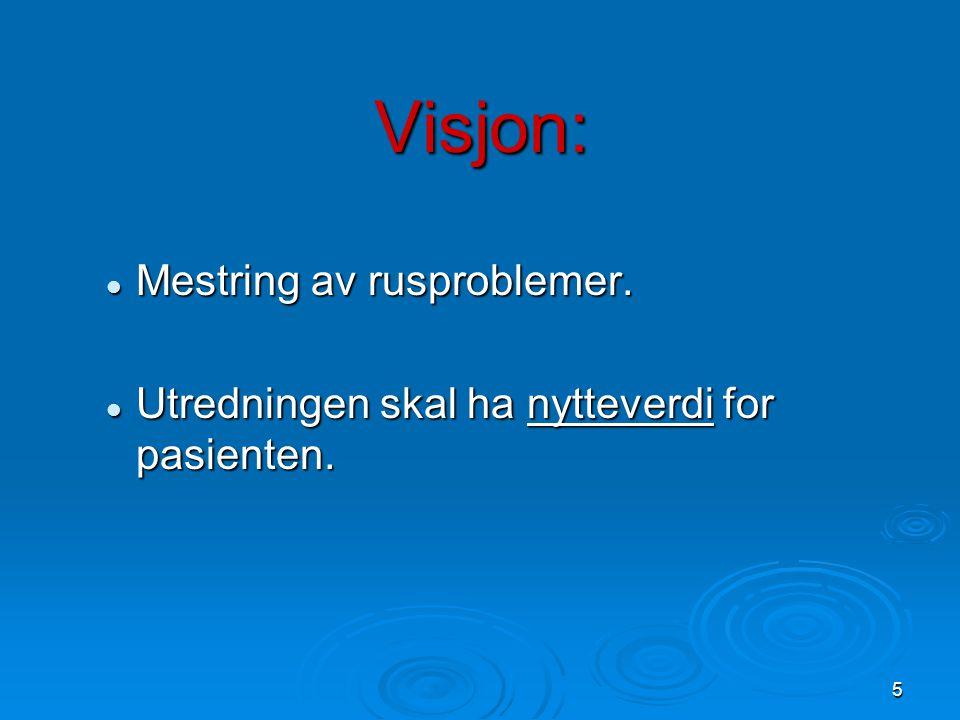 5 Visjon:  Mestring av rusproblemer.  Utredningen skal ha nytteverdi for pasienten.