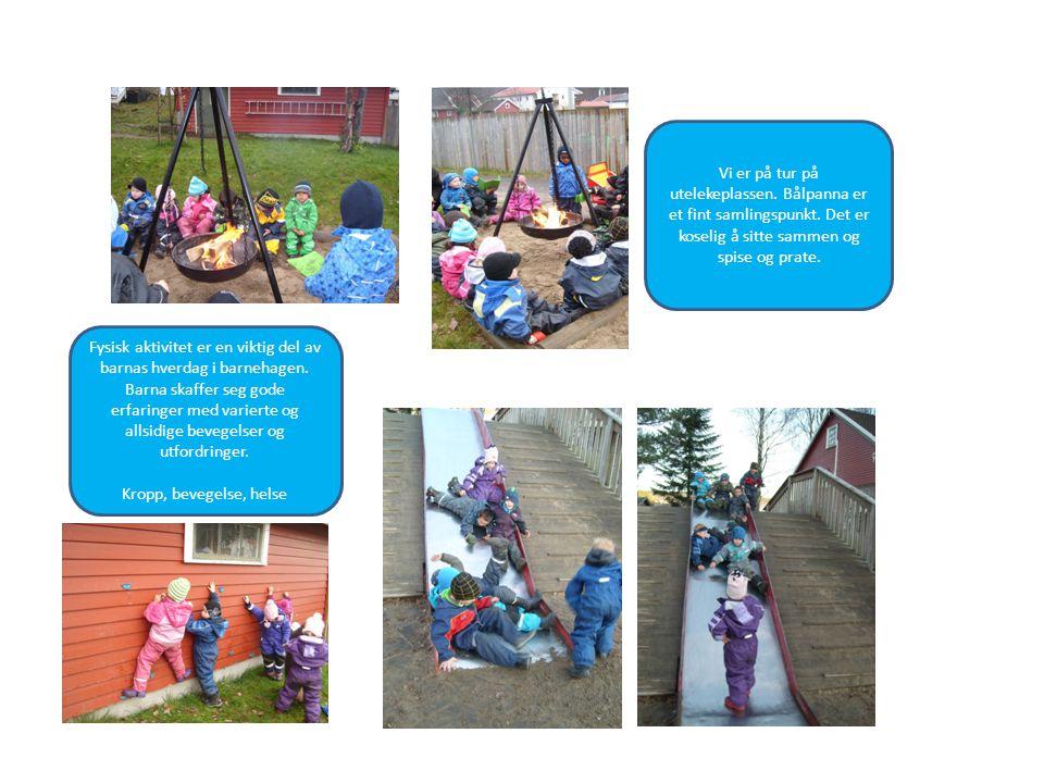 Fysisk aktivitet er en viktig del av barnas hverdag i barnehagen. Barna skaffer seg gode erfaringer med varierte og allsidige bevegelser og utfordring